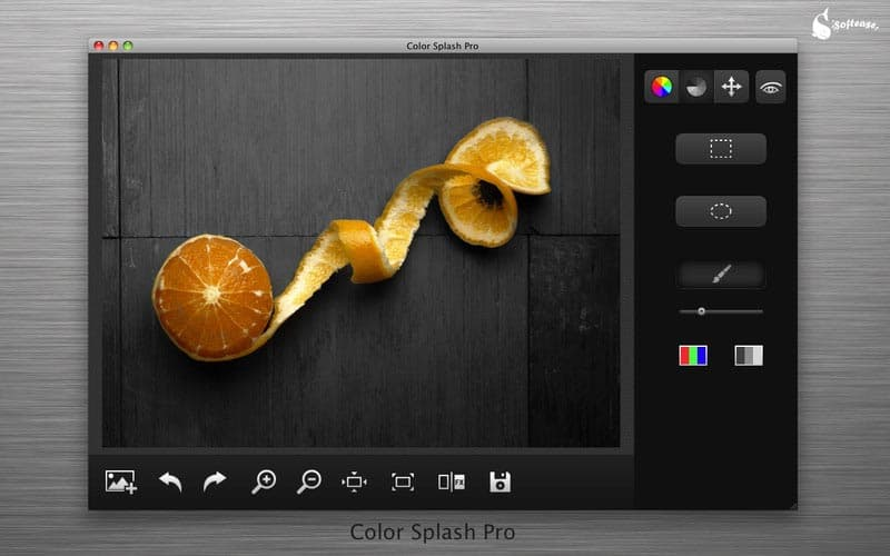 Color Splash Pro