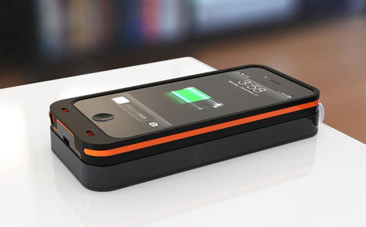 Dog & Bone Wireless Charging 1
